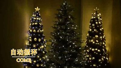 圣诞树组合