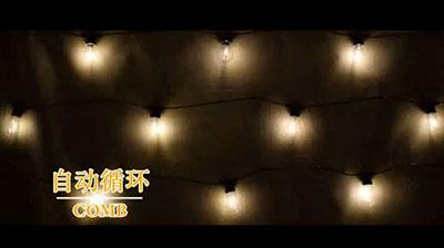 暖白色灯泡灯串3